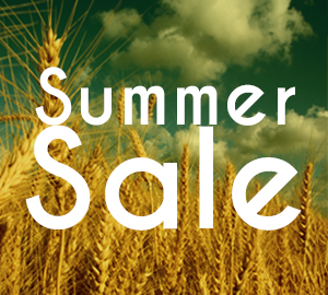 news-summerSale